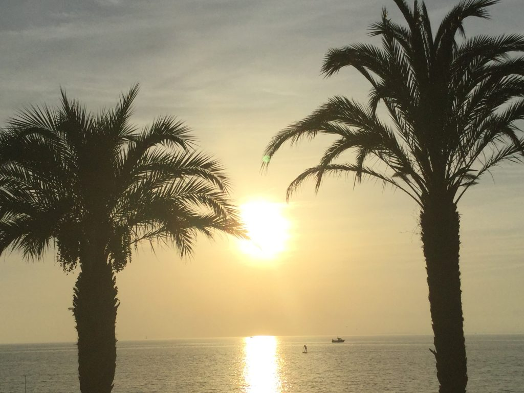 Two palm trees and the see in a sunset